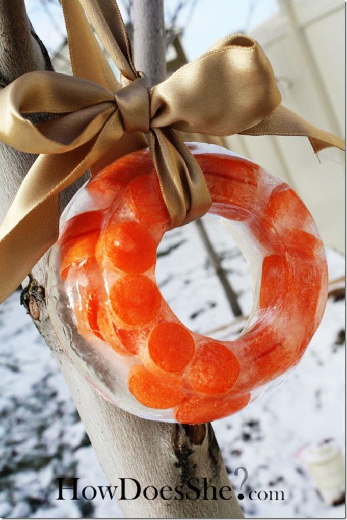 carrotwreath