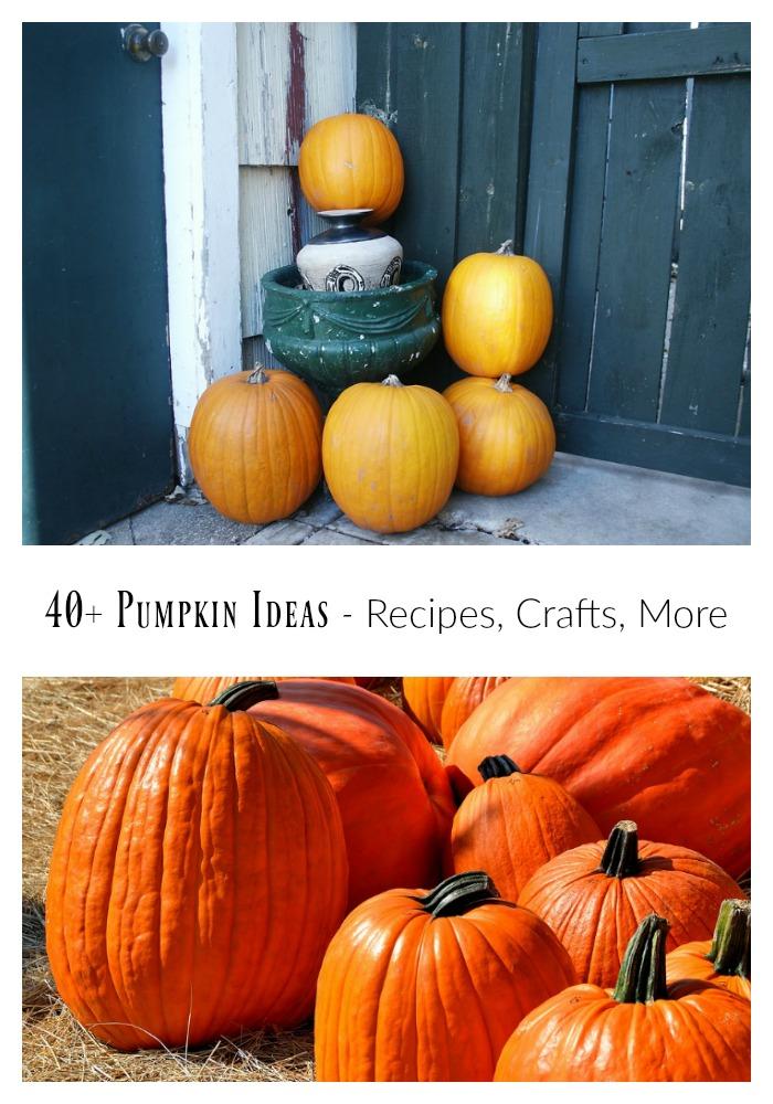 40-pumpkin-ideas-crafts-recipes-more