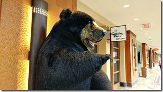 bear casinorama