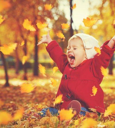 fun fall day trips