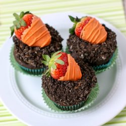 carrot patch cupcakes IG