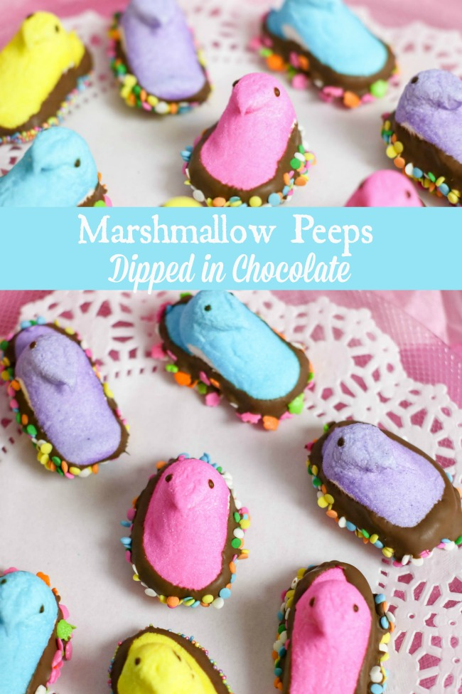 yummy marshmallow Peeps dipped in chocolate